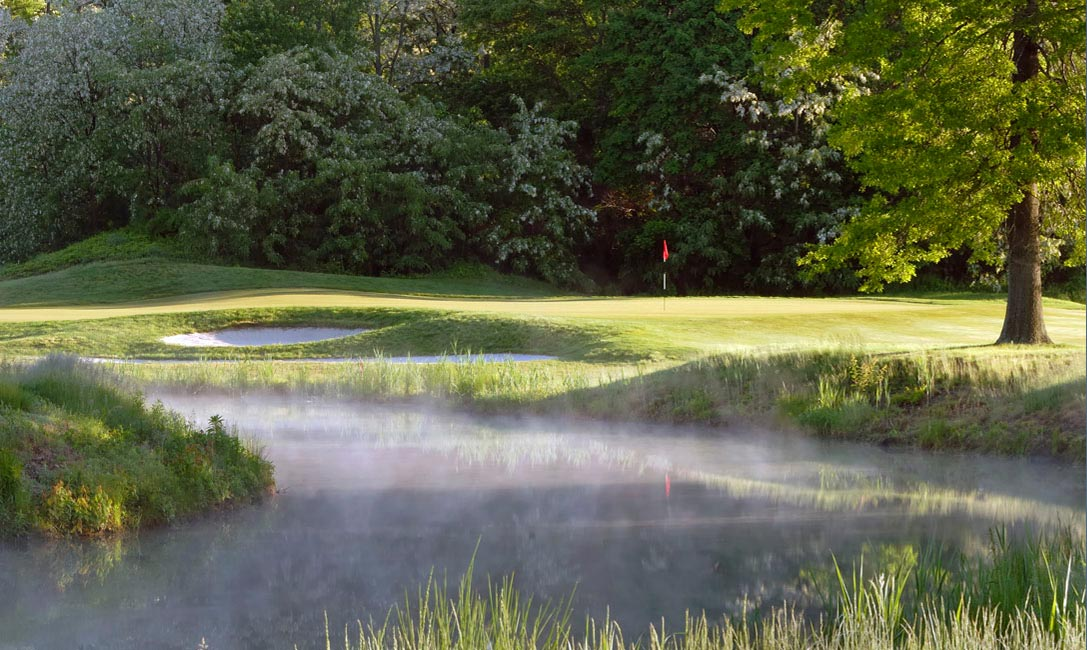 golf course photography of green